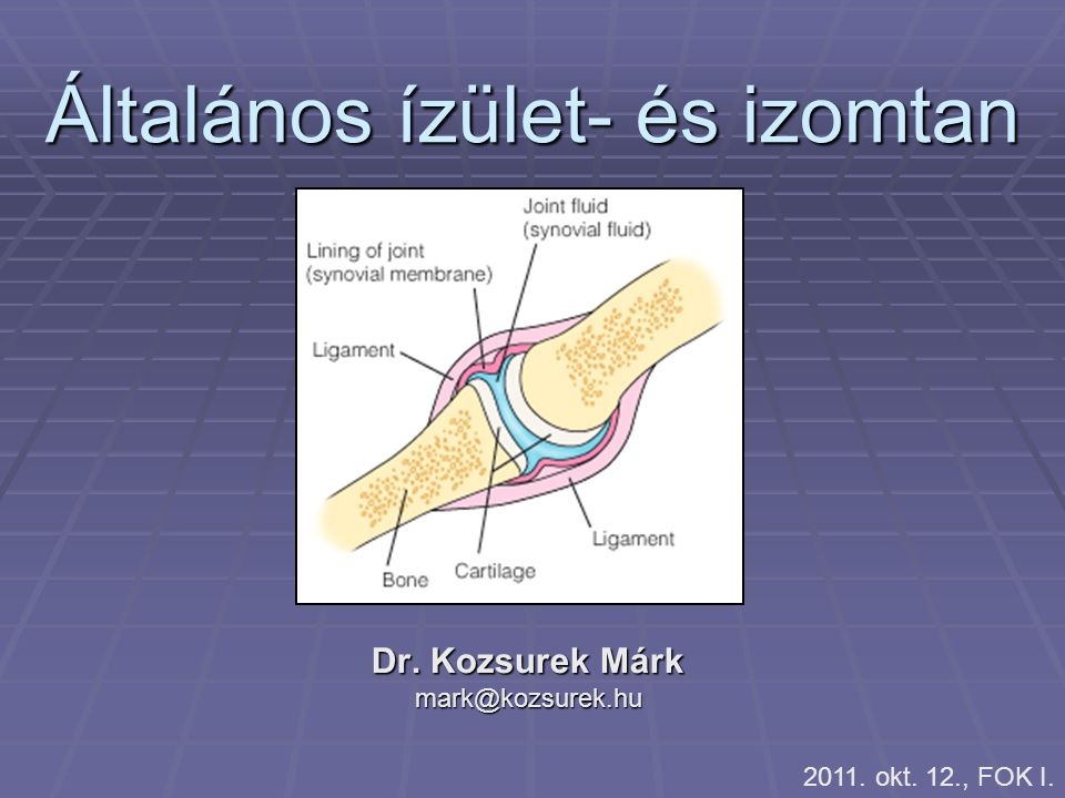 Általános ízület- és izomtan Dr. Kozsurek Márk mark@kozsurek.hu 2011. okt. 12., FOK I.