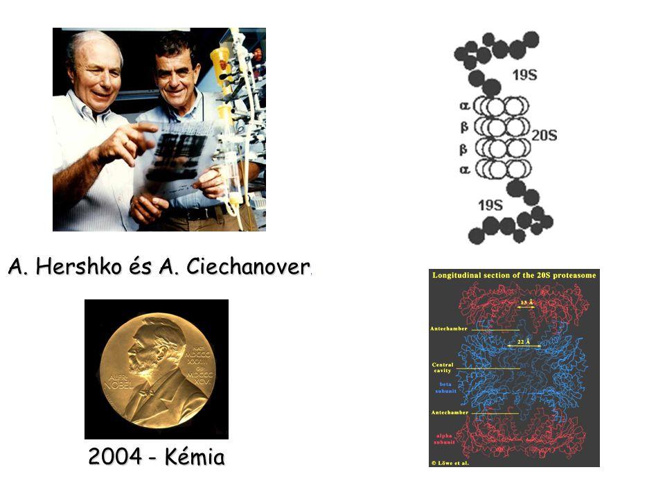 A. Hershko és A. Ciechanover A. Hershko és A. Ciechanover, 2004 - Kémia
