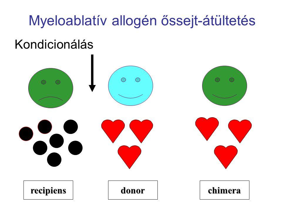 Myeloablatív allogén őssejt-átültetés Kondicionálás recipiensdonorchimera
