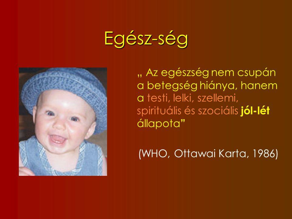 Bio-pszicho-szociális szemlélet Biológia Pszichológia Család Gyermek Társadalom