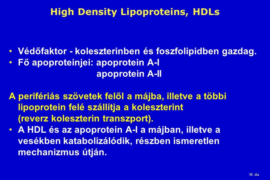 18. dia High Density Lipoproteins, HDLs Védőfaktor - koleszterinben és foszfolipidben gazdag. Fő apoproteinjei: apoprotein A-I apoprotein A-II A perif