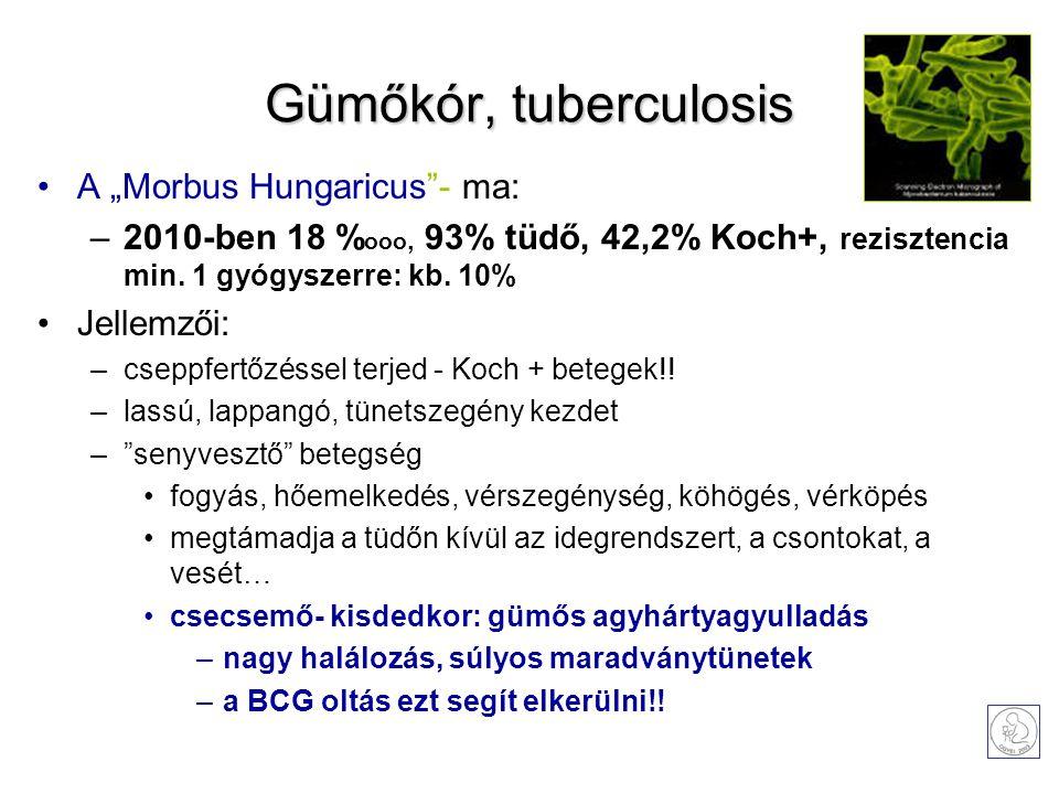 """Gümőkór, tuberculosis A """"Morbus Hungaricus""""- ma: –2010-ben 18 % ooo, 93% tüdő, 42,2% Koch+, rezisztencia min. 1 gyógyszerre: kb. 10% Jellemzői: –csepp"""