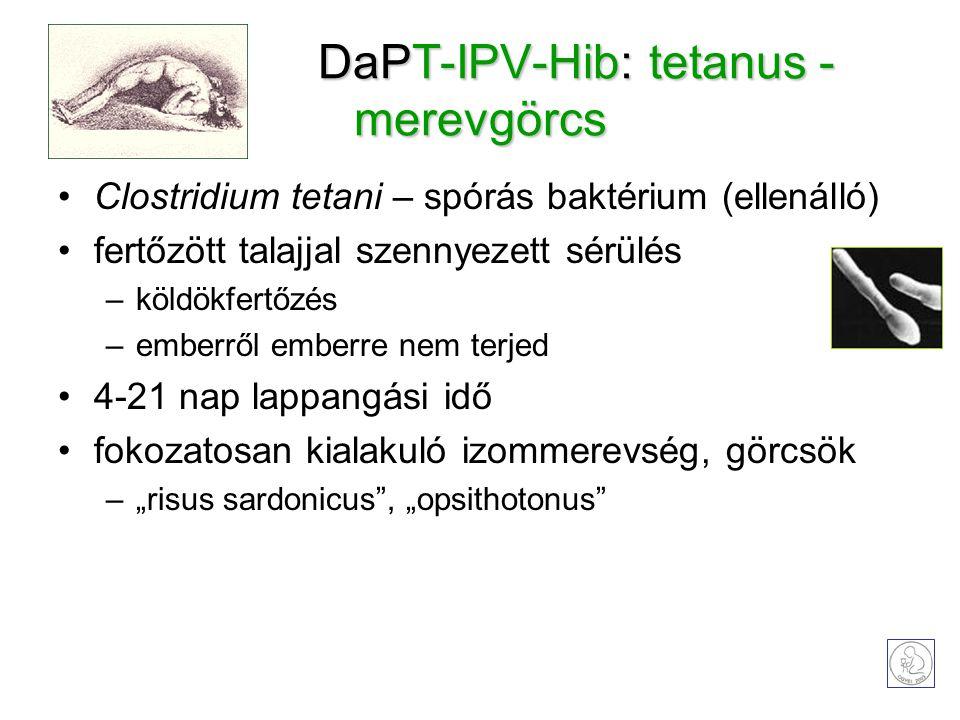 """DaPT-IPV-Hib: tetanus - merevgörcs Clostridium tetani – spórás baktérium (ellenálló) fertőzött talajjal szennyezett sérülés –köldökfertőzés –emberről emberre nem terjed 4-21 nap lappangási idő fokozatosan kialakuló izommerevség, görcsök –""""risus sardonicus , """"opsithotonus"""