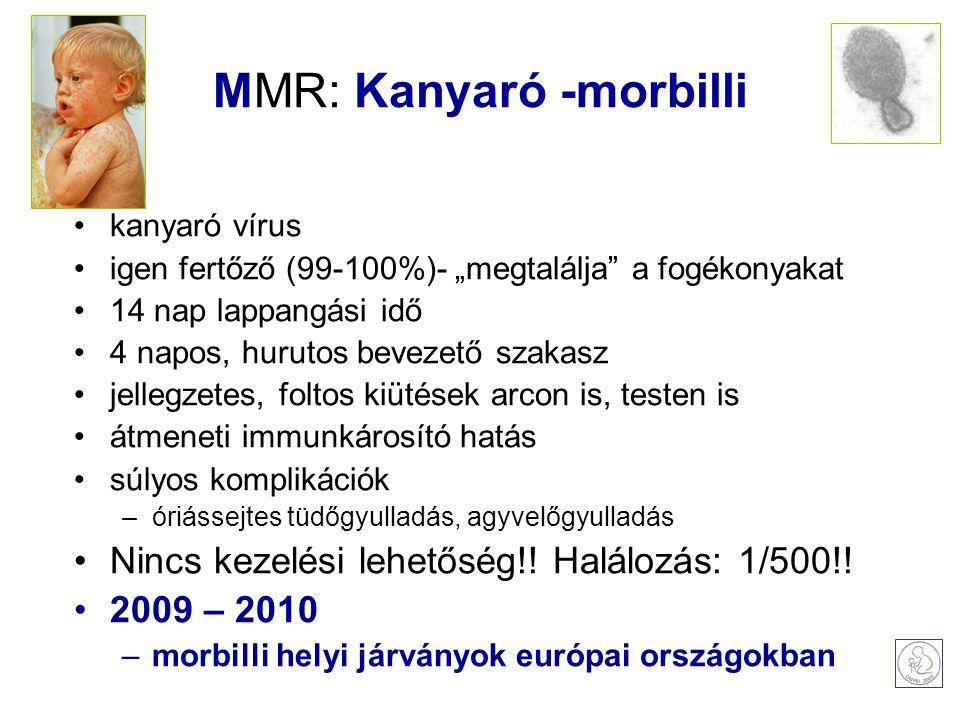 """MMR: Kanyaró -morbilli kanyaró vírus igen fertőző (99-100%)- """"megtalálja a fogékonyakat 14 nap lappangási idő 4 napos, hurutos bevezető szakasz jellegzetes, foltos kiütések arcon is, testen is átmeneti immunkárosító hatás súlyos komplikációk –óriássejtes tüdőgyulladás, agyvelőgyulladás Nincs kezelési lehetőség!."""