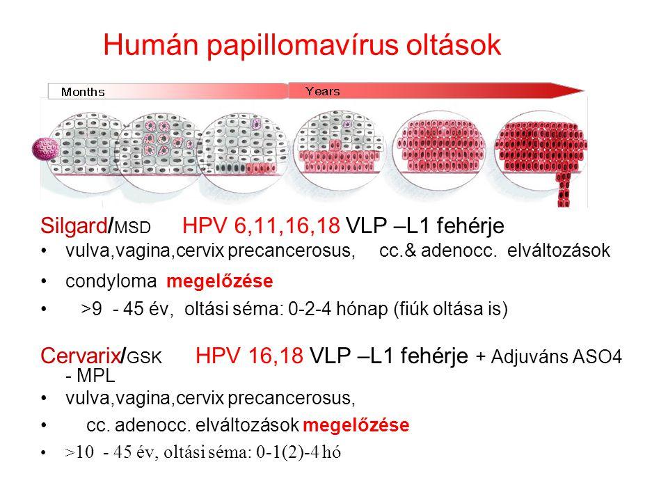 Humán papillomavírus oltások Silgard/ MSD HPV 6,11,16,18 VLP –L1 fehérje vulva,vagina,cervix precancerosus, cc.& adenocc. elváltozások condyloma megel