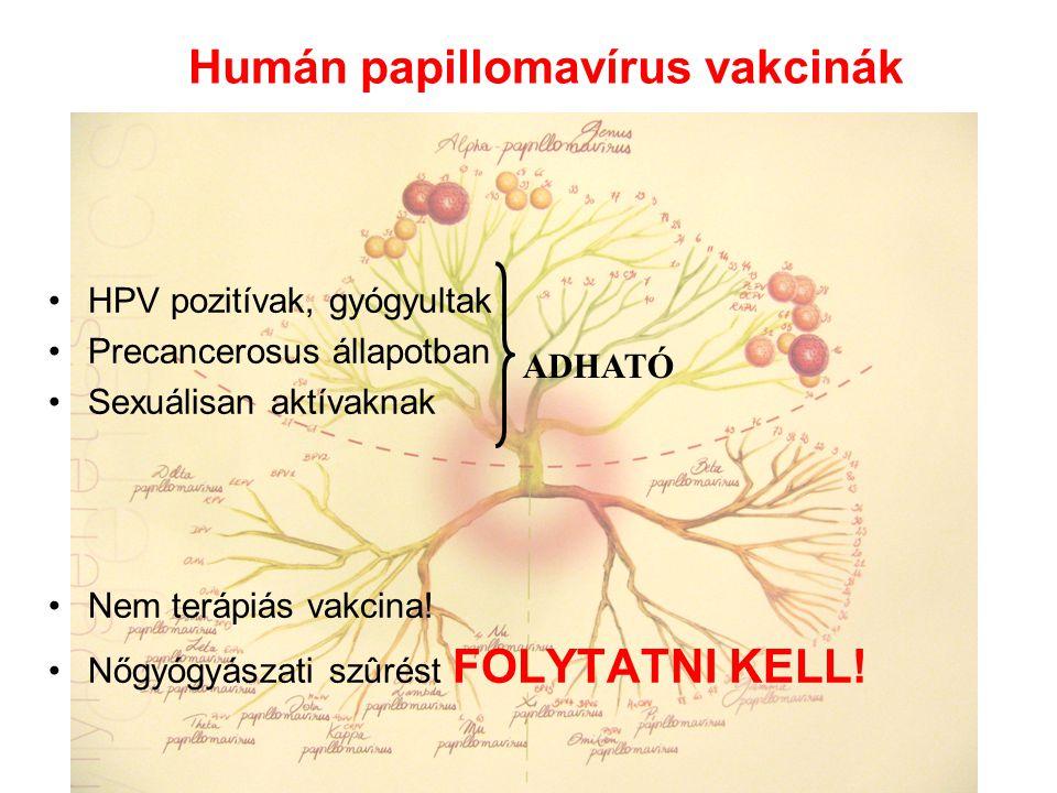 Humán papillomavírus vakcinák HPV pozitívak, gyógyultak Precancerosus állapotban Sexuálisan aktívaknak Nem terápiás vakcina! Nőgyógyászati szûrést FOL