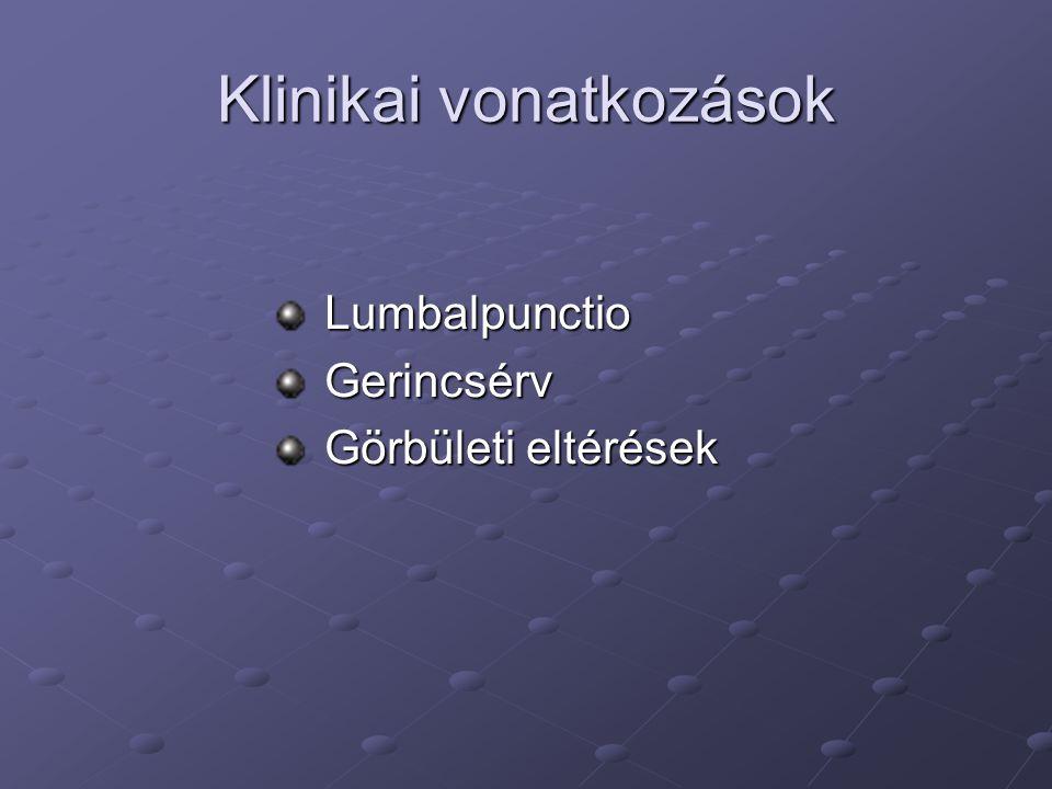 Klinikai vonatkozások Lumbalpunctio Lumbalpunctio Gerincsérv Gerincsérv Görbületi eltérések Görbületi eltérések