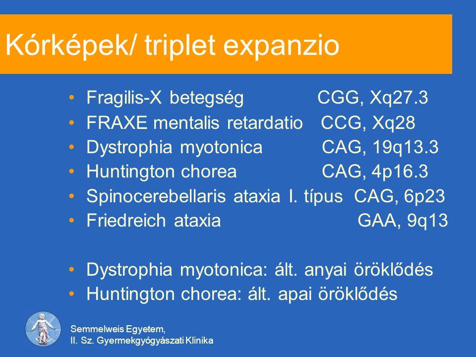 Semmelweis Egyetem, II. Sz. Gyermekgyógyászati Klinika Kórképek/ triplet expanzio Fragilis-X betegség CGG, Xq27.3 FRAXE mentalis retardatio CCG, Xq28
