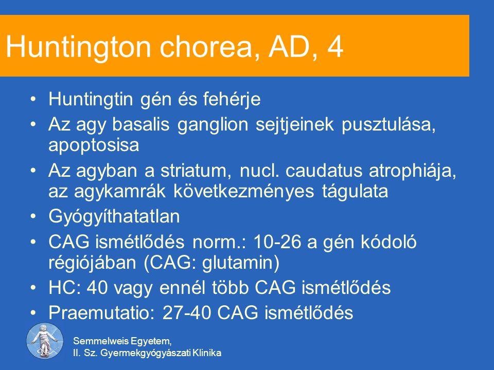 Semmelweis Egyetem, II. Sz. Gyermekgyógyászati Klinika Huntington chorea, AD, 4 Huntingtin gén és fehérje Az agy basalis ganglion sejtjeinek pusztulás