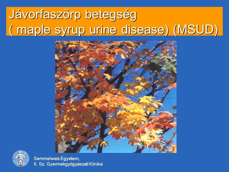 Semmelweis Egyetem, II. Sz. Gyermekgyógyászati Klinika Jávorfaszörp betegség ( maple syrup urine disease) (MSUD)