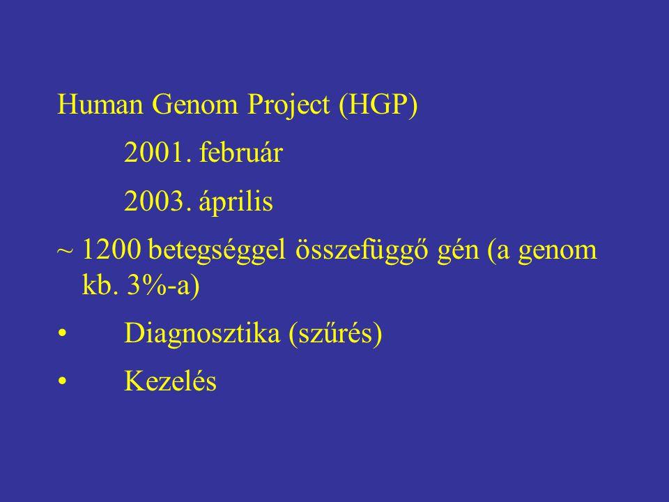 Human Genom Project (HGP) 2001. február 2003. április ~ 1200 betegséggel összefüggő gén (a genom kb. 3%-a) Diagnosztika (szűrés) Kezelés