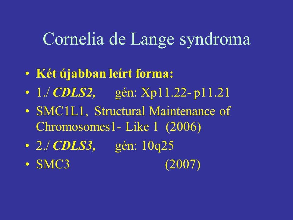 Cornelia de Lange syndroma Két újabban leírt forma: 1./ CDLS2, gén: Xp11.22- p11.21 SMC1L1, Structural Maintenance of Chromosomes1- Like 1 (2006) 2./