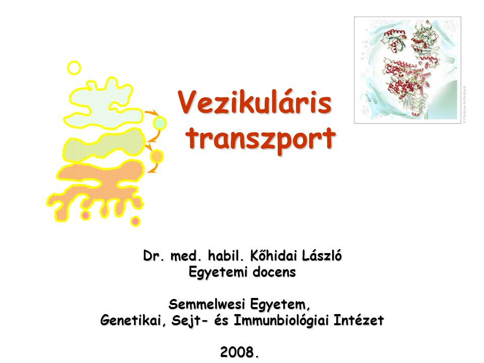 Vezikuláris transzport Dr.med. habil.
