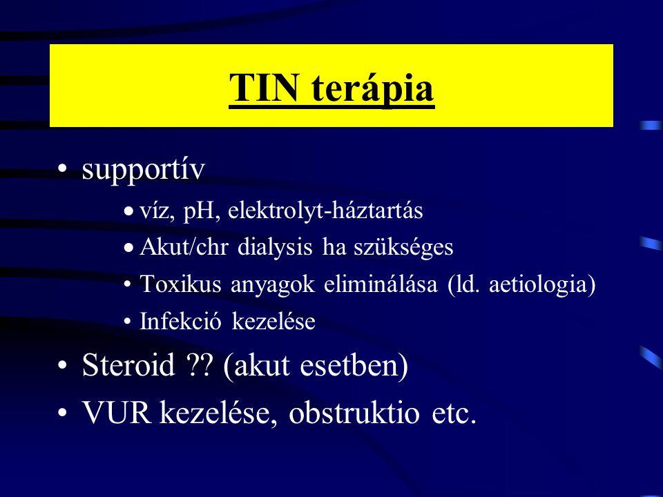 TIN terápia supportív  víz, pH, elektrolyt-háztartás  Akut/chr dialysis ha szükséges Toxikus anyagok eliminálása (ld. aetiologia) Infekció kezelése