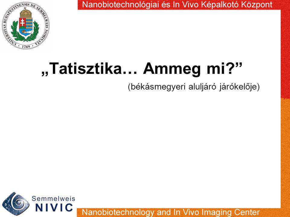 """""""Tatisztika… Ammeg mi?"""" (békásmegyeri aluljáró járókelője)"""