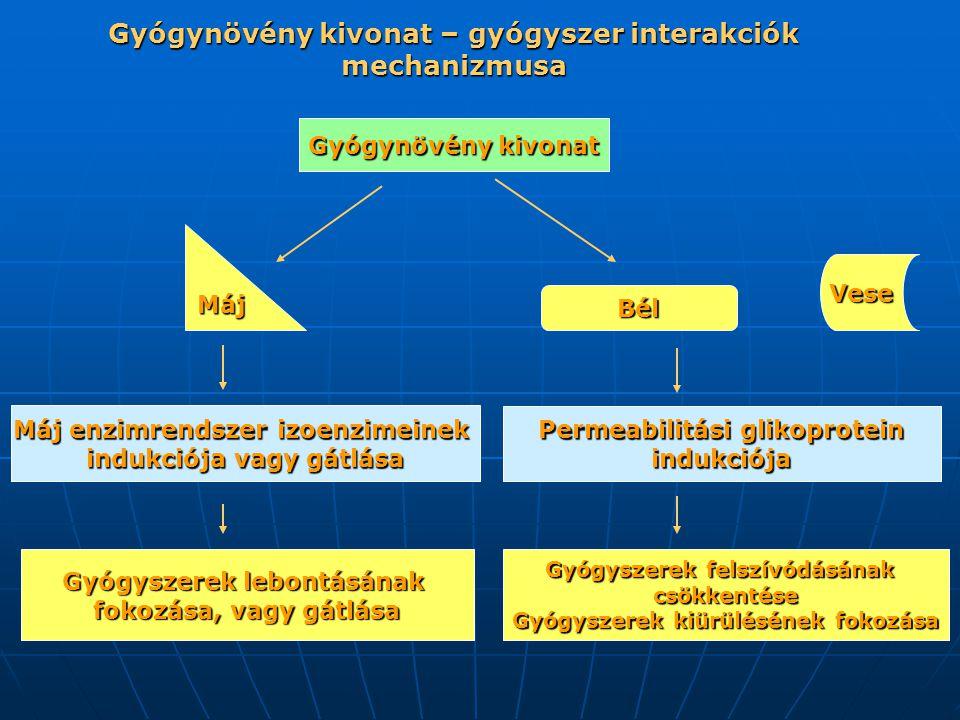 Máj Bél Vese Gyógynövénykivonat Gyógynövény kivonat Permeabilitási glikoprotein indukciója Máj enzimrendszer izoenzimeinek indukciója vagy gátlása Gyógyszerek lebontásának fokozása, vagy gátlása Gyógyszerek felszívódásának csökkentése Gyógyszerek kiürülésének fokozása Gyógynövény kivonat – gyógyszer interakciók mechanizmusa