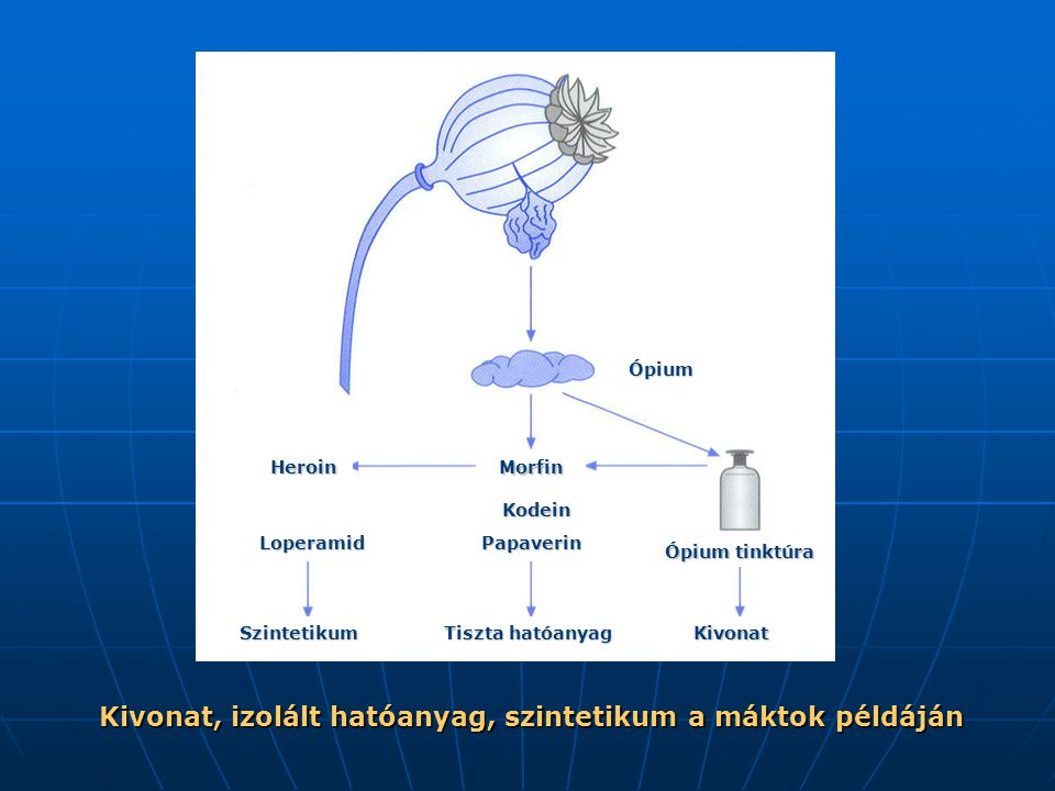 Kivonat, izolált hatóanyag, szintetikum a máktok példáján Szintetikum Tiszta hatóanyag Kivonat Heroin Ópium Morfin Kodein Papaverin Ópium tinktúra Loperamid