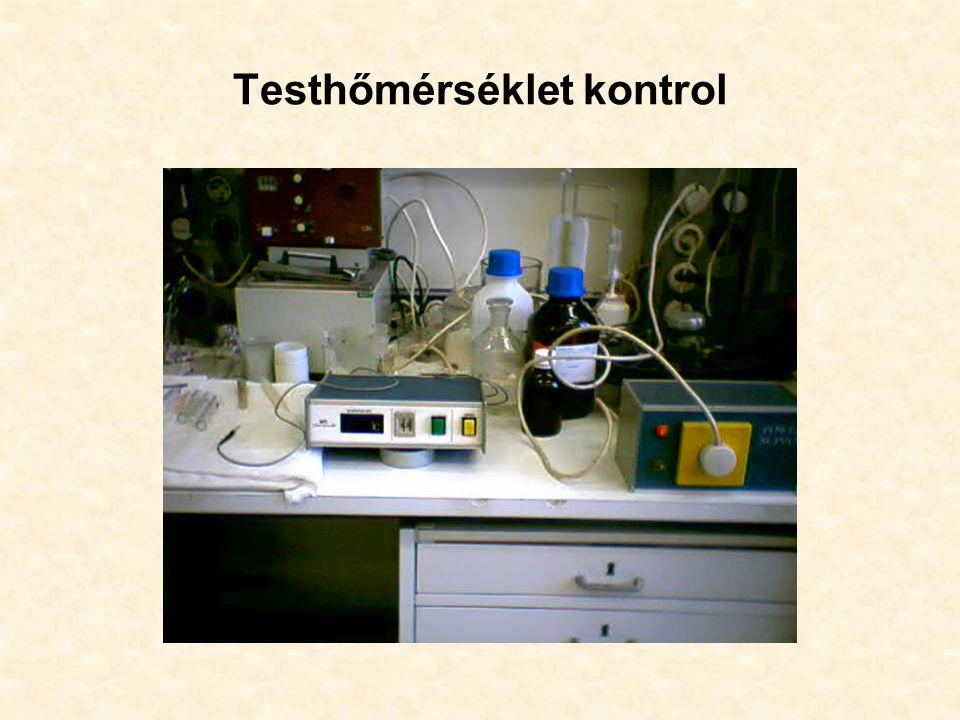 Testhőmérséklet kontrol