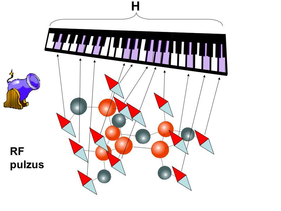 H RF pulzus