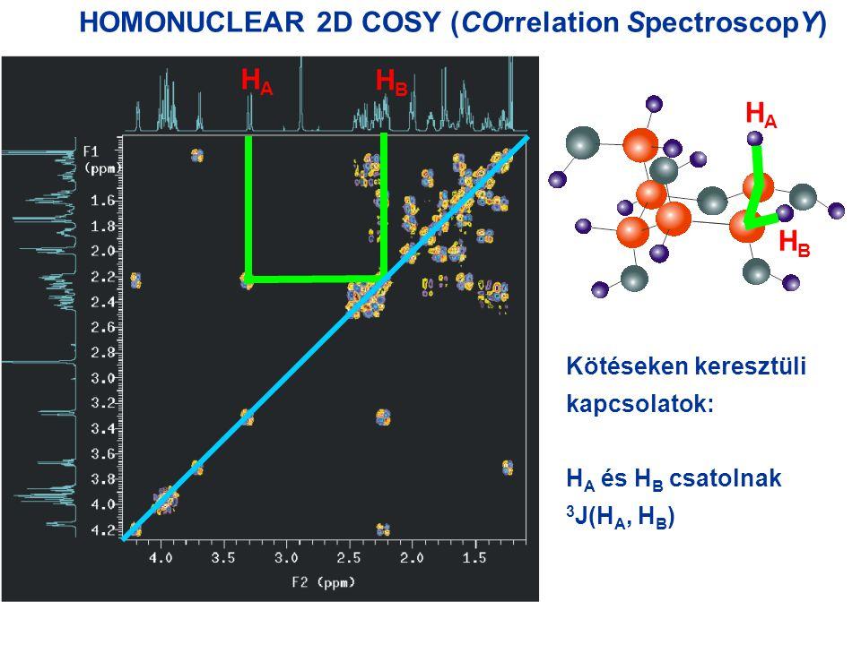 HOMONUCLEAR 2D COSY (COrrelation SpectroscopY) HAHA HBHB HAHA HBHB Kötéseken keresztüli kapcsolatok: H A és H B csatolnak 3 J(H A, H B )