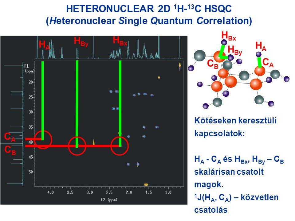 HETERONUCLEAR 2D 1 H- 13 C HSQC (Heteronuclear Single Quantum Correlation) HAHA H Bx HAHA H By Kötéseken keresztüli kapcsolatok: H A - C A és H Bx, H By – C B skalárisan csatolt magok.