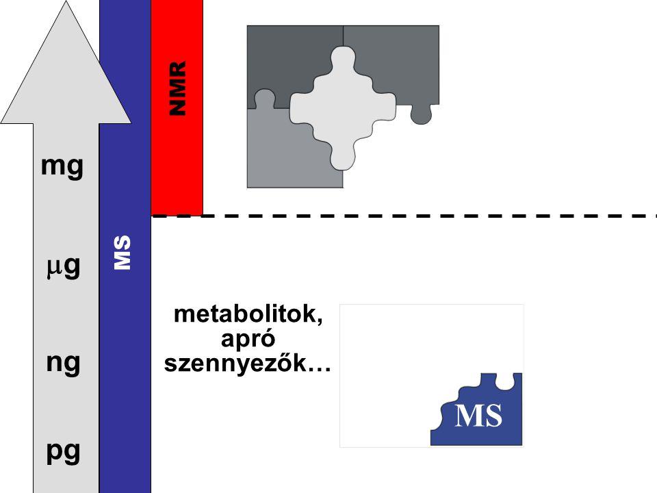 pg ng gg mg NMR MS metabolitok, apró szennyezők… MS