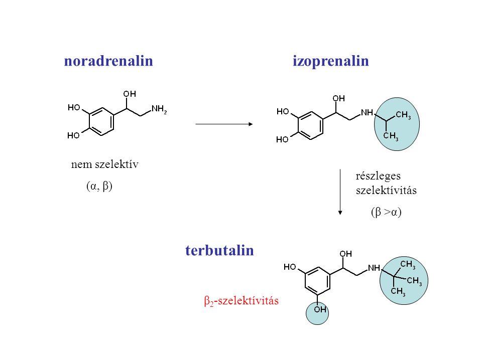 noradrenalin izoprenalin nem szelektív (α, β) részleges szelektívitás (β >α) terbutalin β 2 -szelektívitás