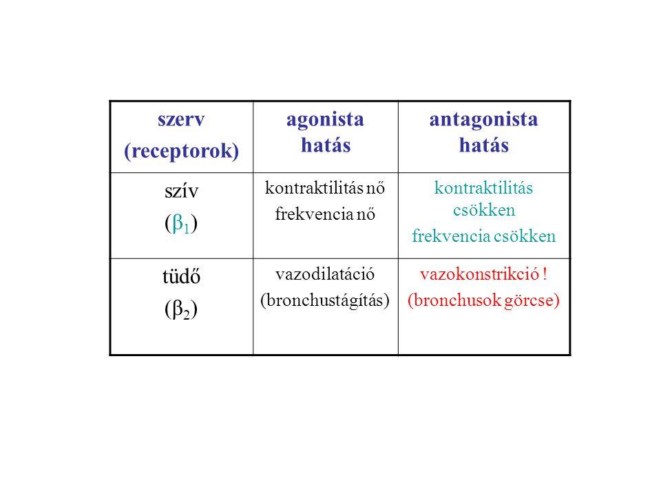 szerv (receptorok) agonista hatás antagonista hatás szív (β 1 ) kontraktilitás nő frekvencia nő kontraktilitás csökken frekvencia csökken tüdő (β 2 ) vazodilatáció (bronchustágítás) vazokonstrikció .