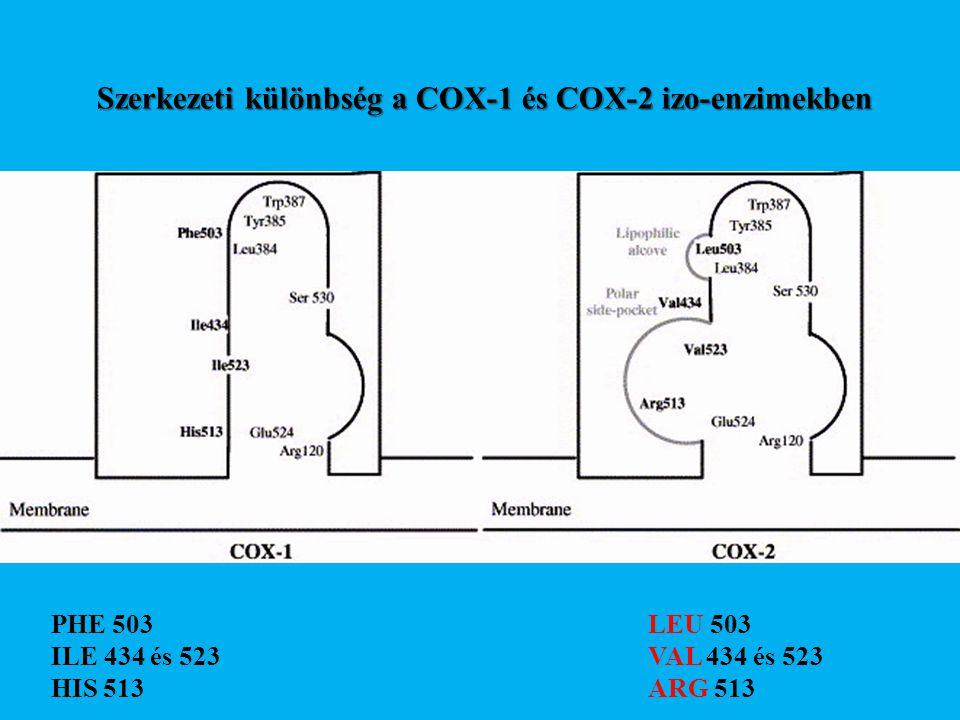 Szerkezeti különbség a COX-1 és COX-2 izo-enzimekben PHE 503 ILE 434 és 523 HIS 513 LEU 503 VAL 434 és 523 ARG 513