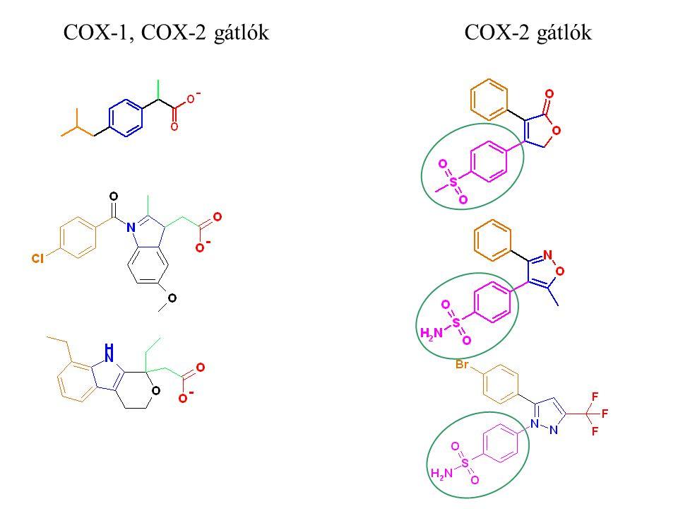 COX-1, COX-2 gátlókCOX-2 gátlók