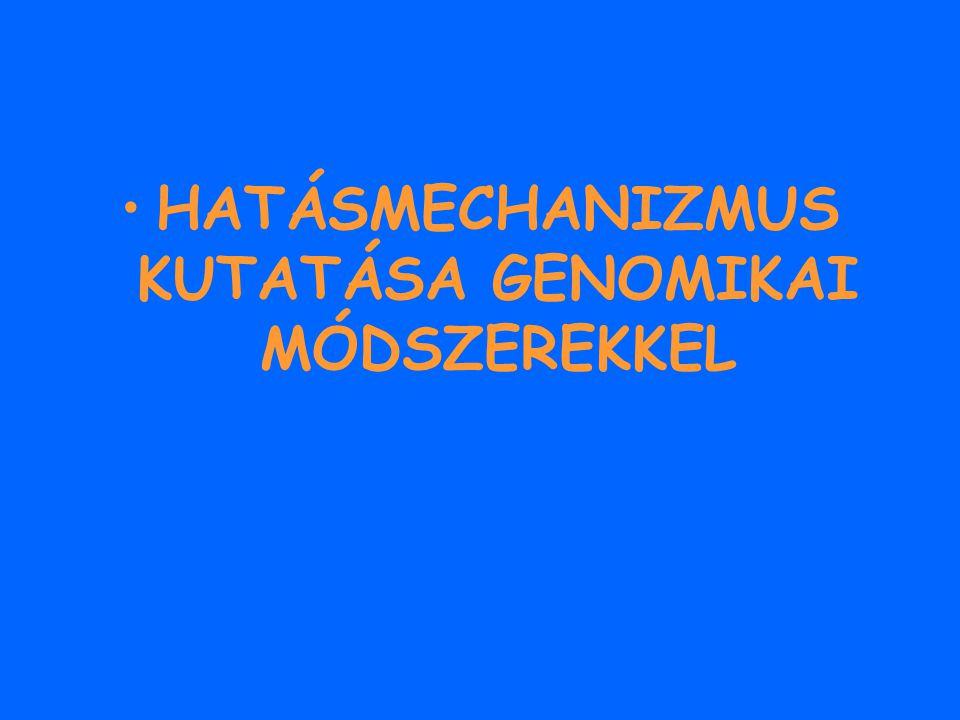 HATÁSMECHANIZMUS KUTATÁSA GENOMIKAI MÓDSZEREKKEL