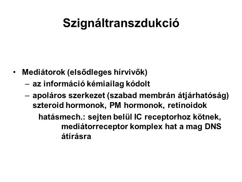 EPSP, IPSP