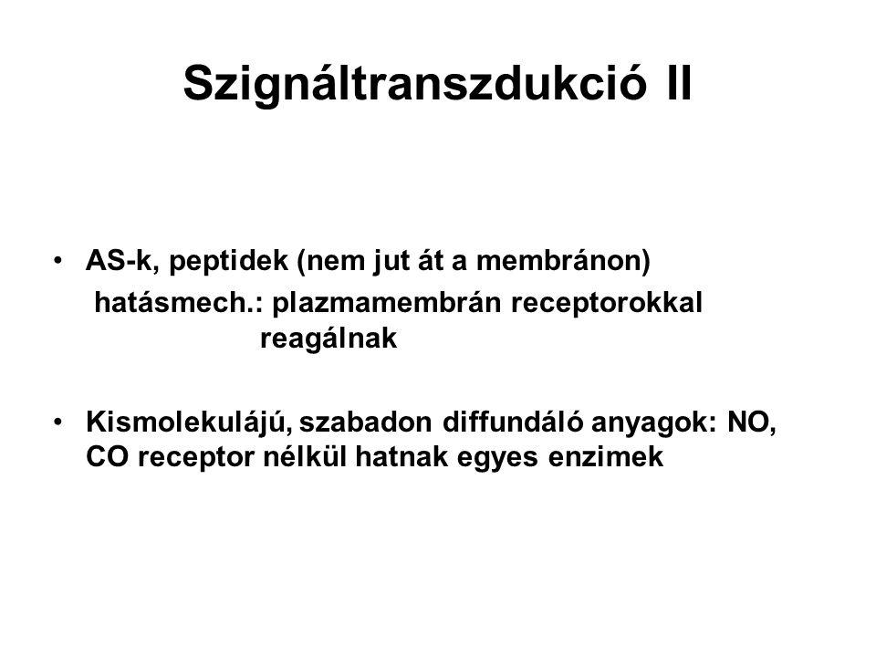 Szignáltranszdukció II AS-k, peptidek (nem jut át a membránon) hatásmech.: plazmamembrán receptorokkal reagálnak Kismolekulájú, szabadon diffundáló an