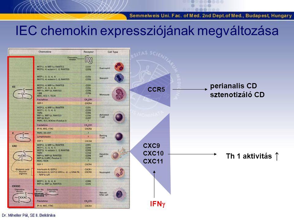 IEC chemokin expressziójának megváltozása IFN  CXC9 CXC10 CXC11 Th 1 aktivitás ↑ CCR5 perianalis CD sztenotizáló CD