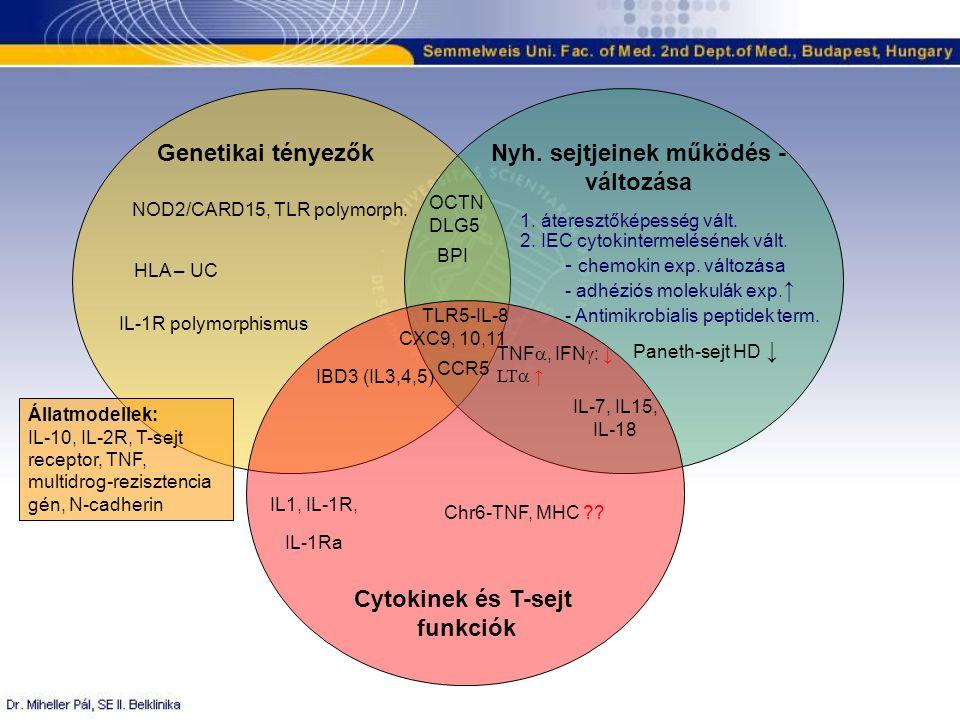 Genetikai tényezőkNyh. sejtjeinek működés - változása Cytokinek és T-sejt funkciók NOD2/CARD15, TLR polymorph. OCTN DLG5 HLA – UC IL-1R polymorphismus