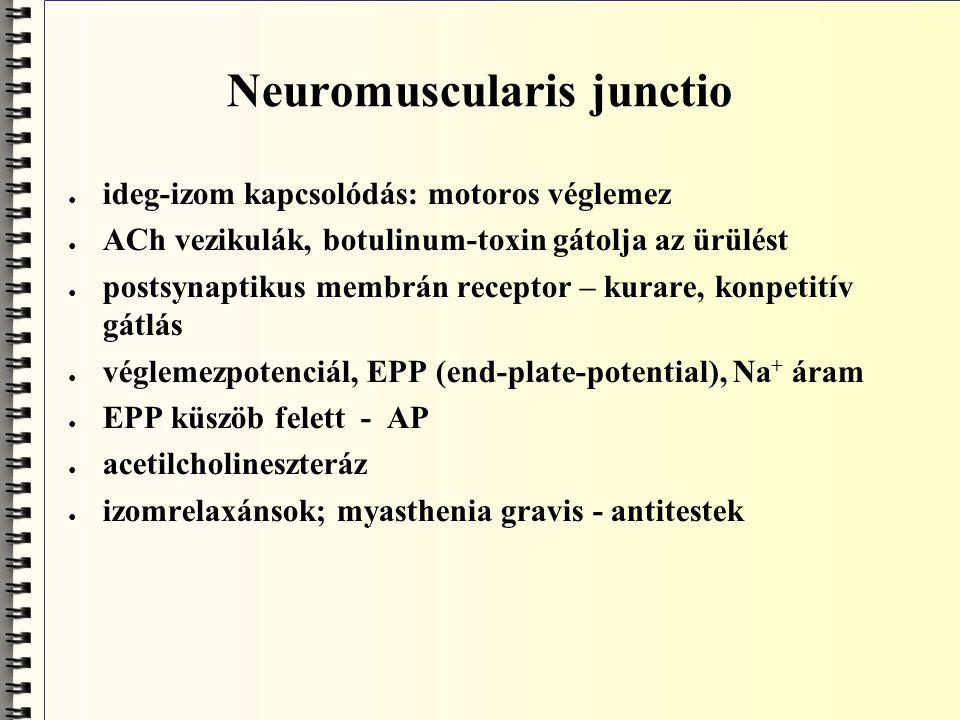 Integrált neuronműködés ● konvergencia, divergencia ● axondomb szerepe ● refrakter periódus szerepe ● adaptáció ● synapticus plaszticitás ● NO, mint neurotranszmitter: NMDA receptor, cGMP