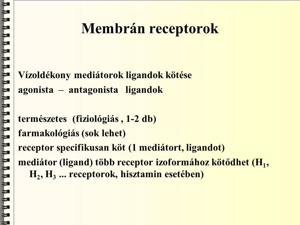 Szignáltranszdukció mechanizmusok ● inotrop receptorokkal (a receptor maga ioncsatorna, a ligand kötésével nyit/zár) E m változik, gyors hatás ● tirozinkinázok ● 7-TM receptorok (G-fehérje konformációváltás)
