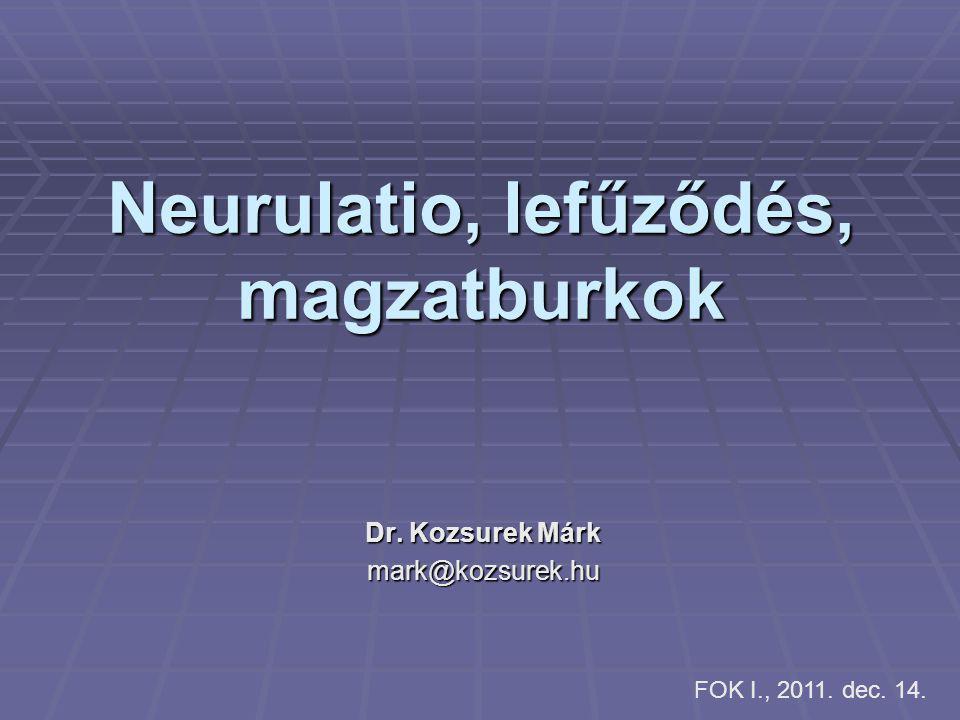 Neurulatio, lefűződés, magzatburkok Dr. Kozsurek Márk mark@kozsurek.hu FOK I., 2011. dec. 14.