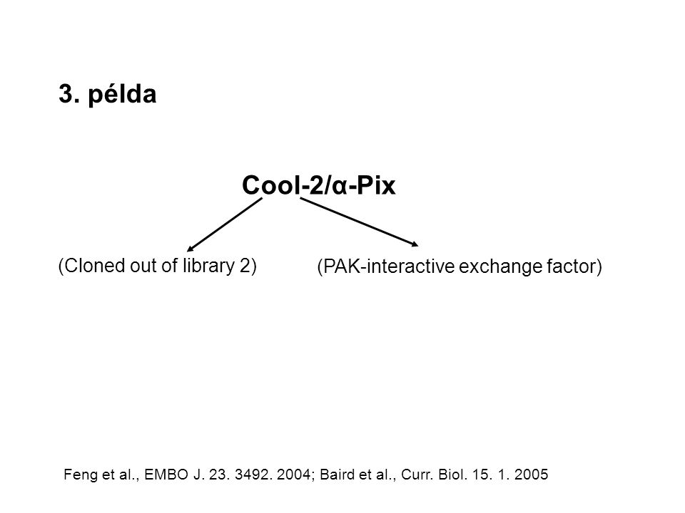 3. példa Cool-2/α-Pix (Cloned out of library 2) (PAK-interactive exchange factor) Feng et al., EMBO J. 23. 3492. 2004; Baird et al., Curr. Biol. 15. 1