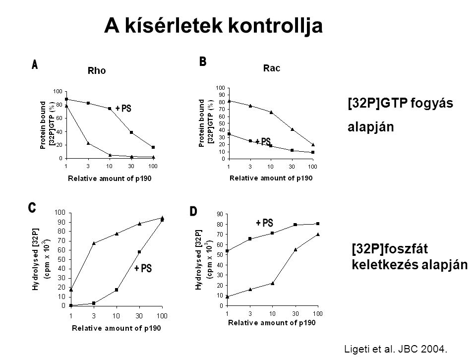 [32P]GTP fogyás alapján [32P]foszfát keletkezés alapján A kísérletek kontrollja Ligeti et al.