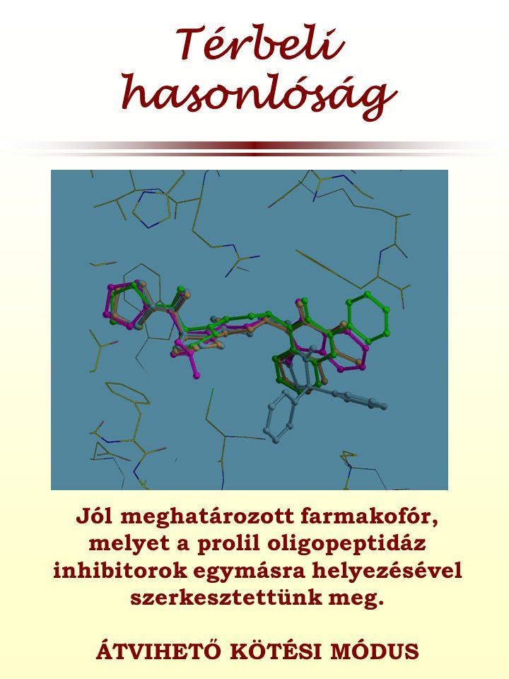 Térbeli hasonlóság Jól meghatározott farmakofór, melyet a prolil oligopeptidáz inhibitorok egymásra helyezésével szerkesztettünk meg.