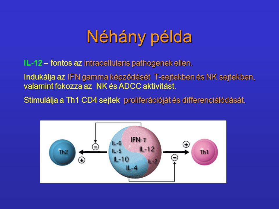 Néhány példa intracellularis pathogenek ellen. IL-12 – fontos az intracellularis pathogenek ellen. IFN gamma képződését T-sejtekben és NK sejtekben, v