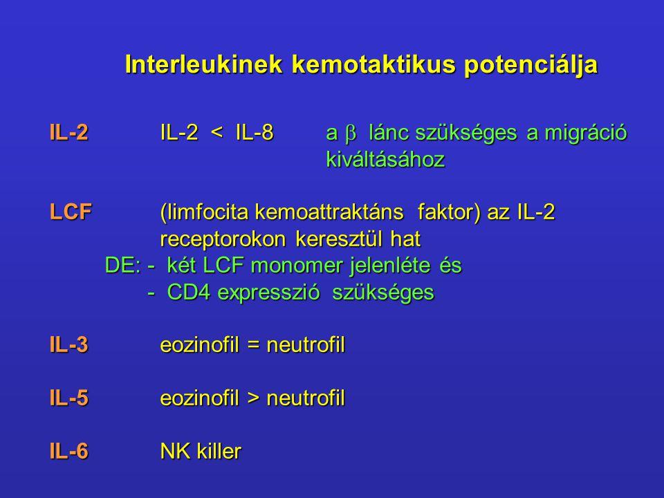 Interleukinek kemotaktikus potenciálja IL-2IL-2 < IL-8a  lánc szükséges a migráció kiváltásához LCF (limfocita kemoattraktáns faktor) az IL-2 recepto