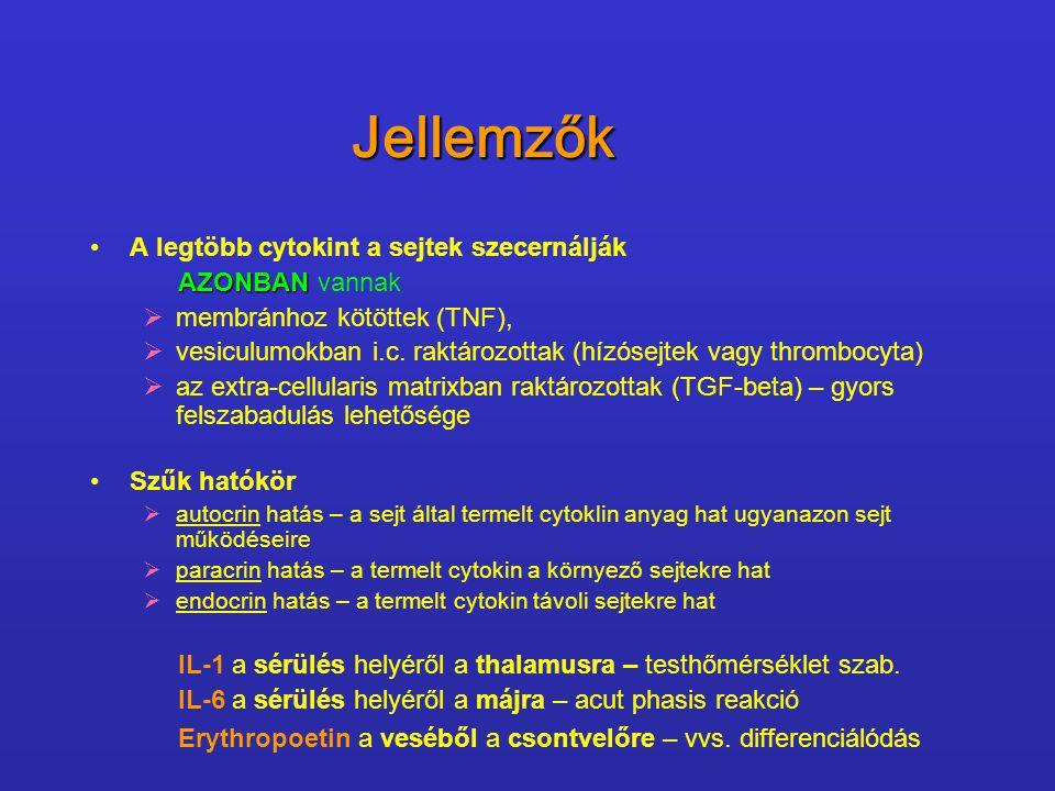 Néhány példa intracellularis pathogenek ellen.IL-12 – fontos az intracellularis pathogenek ellen.