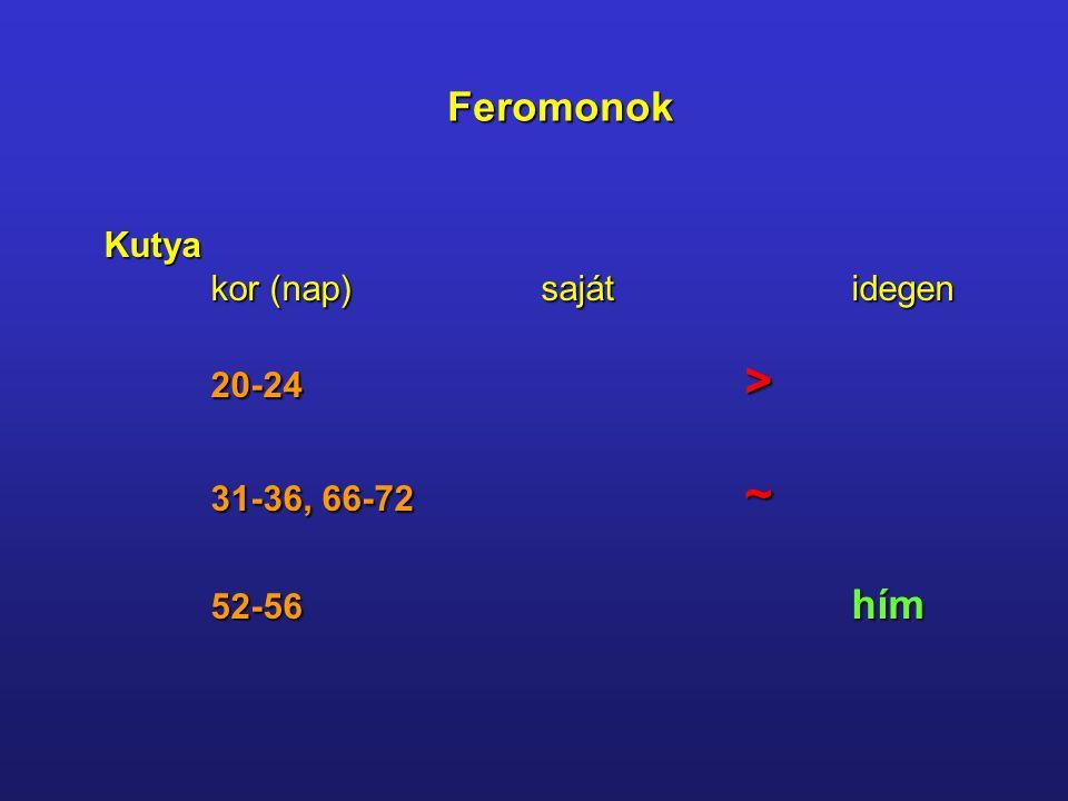 Feromonok Kutya kor (nap) sajátidegen 20-24 > 31-36, 66-72 ~ 52-56 hím