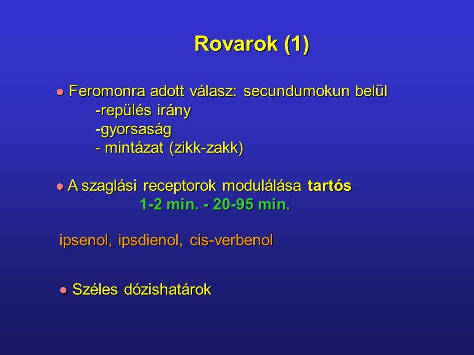Rovarok (2) Hőfüggő válasz Hőfüggő válasz 20 o C 26 o C + repülési meredekség Eltérő mozgási típusok: Eltérő mozgási típusok: schemakineziszikk-zakk tropotaxislook-leap klinotaxis