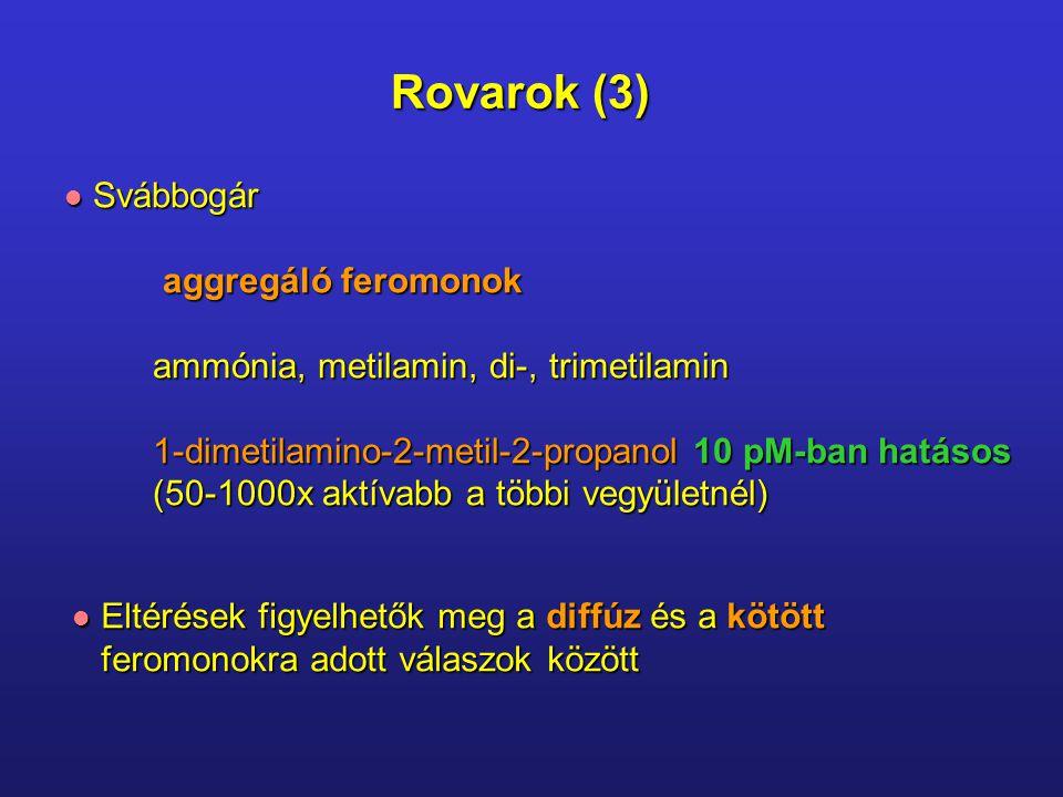 Idegen hím a vizeletében váltja ki a feromont Feromonok (3) Heterozigócia fokát növeli