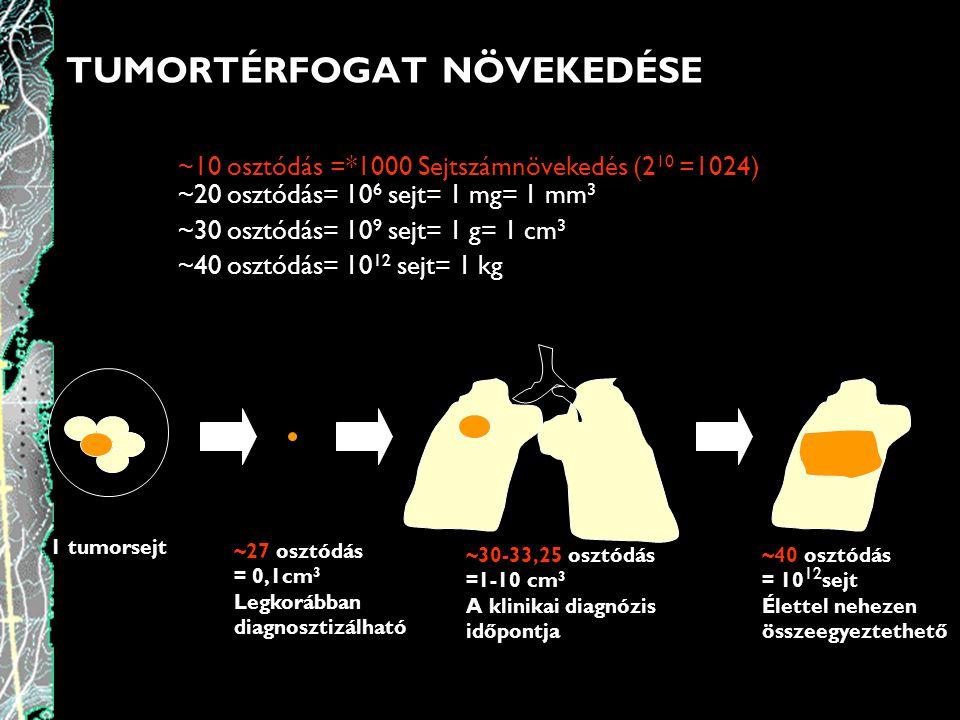 TUMORTÉRFOGAT NÖVEKEDÉSE ~10 osztódás =*1000 Sejtszámnövekedés (2 10 =1024) ~20 osztódás= 10 6 sejt= 1 mg= 1 mm 3 ~30 osztódás= 10 9 sejt= 1 g= 1 cm 3