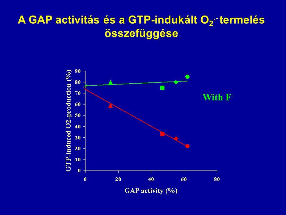 A GAP activitás és a GTP-indukált O 2.- termelés összefüggése With F -