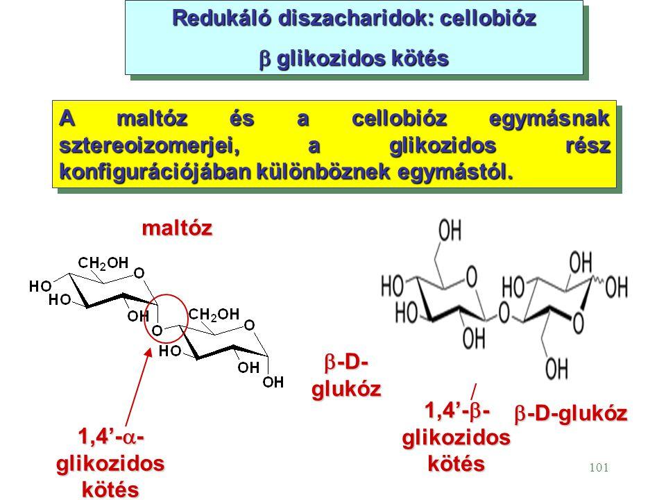 101 Redukáló diszacharidok: cellobióz  glikozidos kötés Redukáló diszacharidok: cellobióz  glikozidos kötés A maltóz és a cellobióz egymásnak sztere